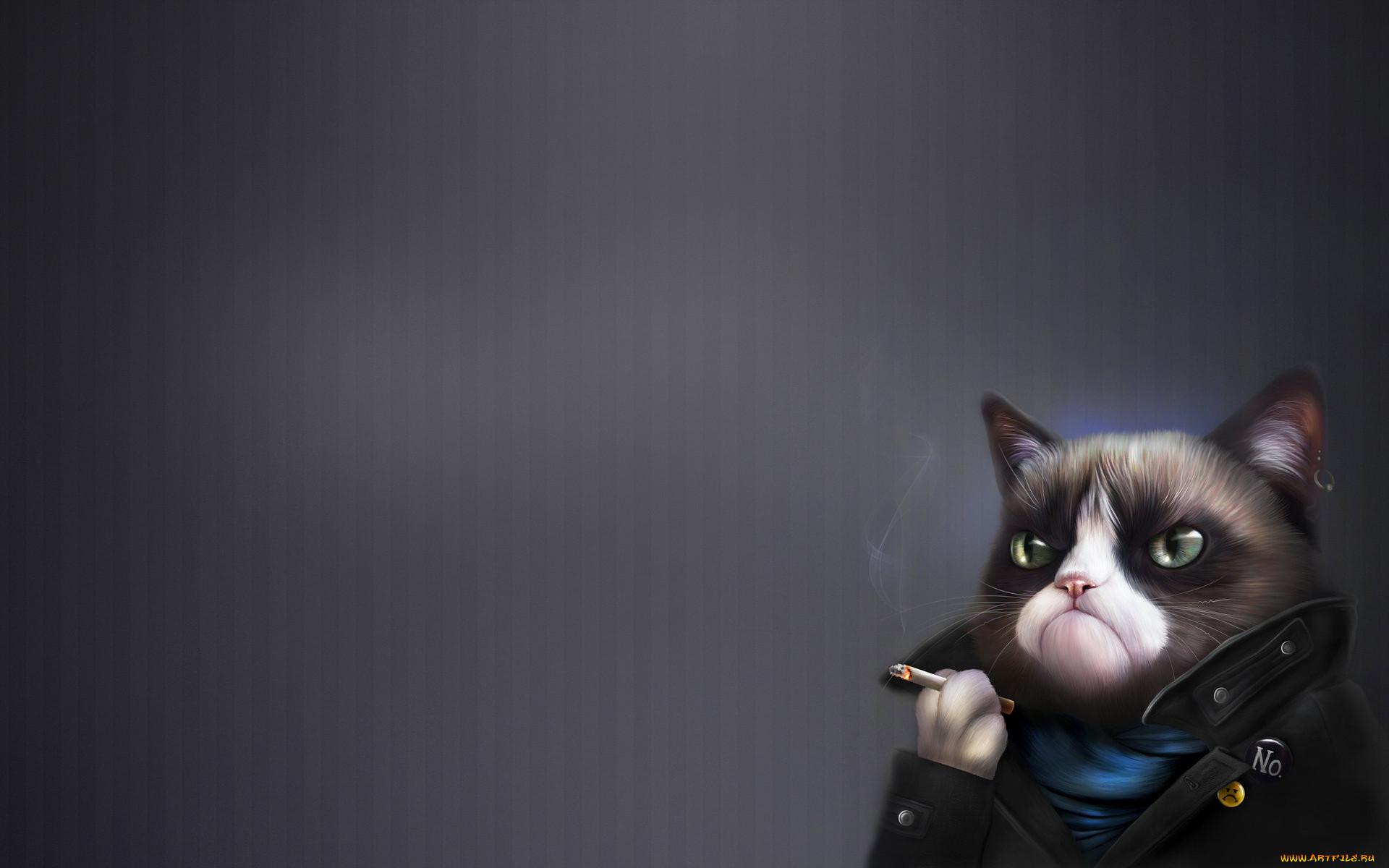 Курение при коте